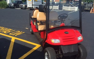 BINTELLI LSV ELECTRIC CARTS